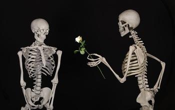 skeletal-601213_640.jpg